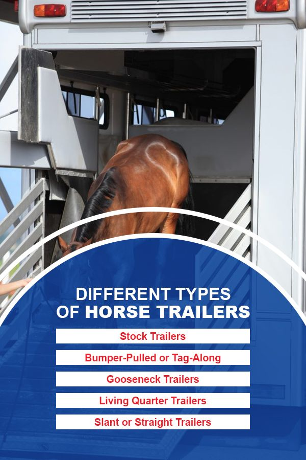 Different Types of Horse Trailers
